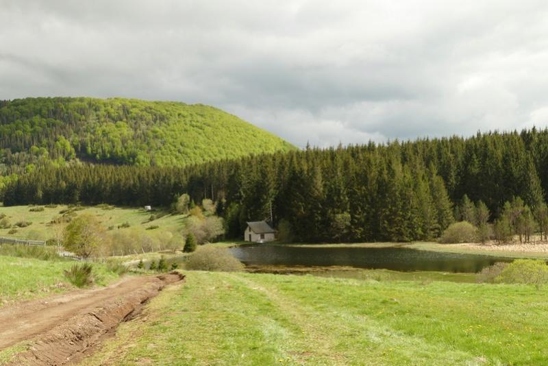 Spot Scale & Craler dans le Puy de Dome P1010410