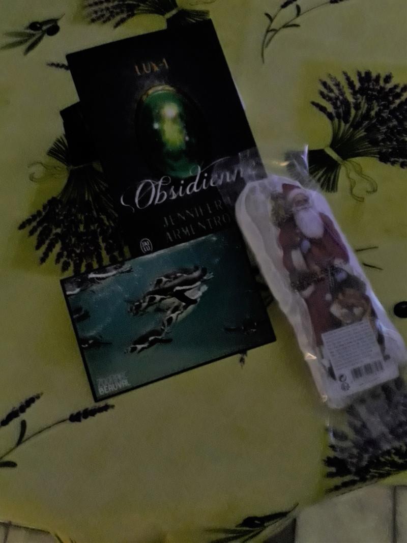 Un cadeau entre membres pour Noël 2017 ! - Page 2 Swapye10