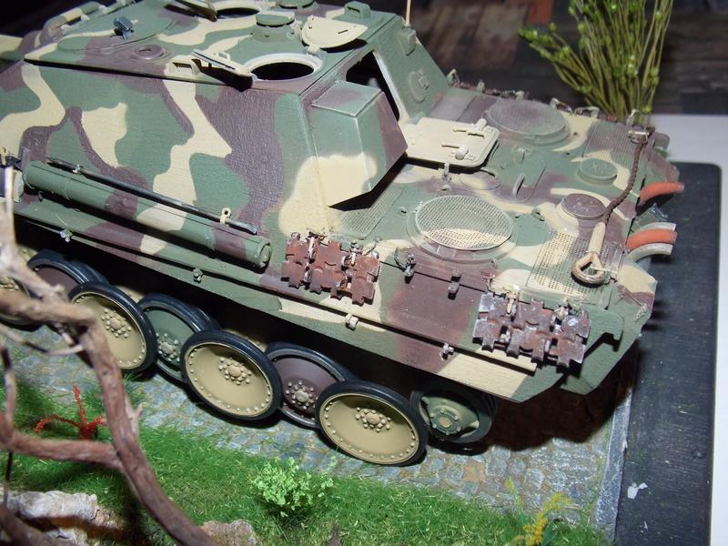 jagdpanther - Jagdpanther sur la voie (dragon 1/35) - Page 2 Dscn6119