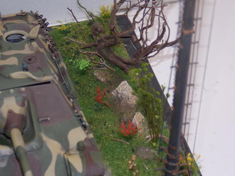 jagdpanther - Jagdpanther sur la voie (dragon 1/35) - Page 2 Dscn6137