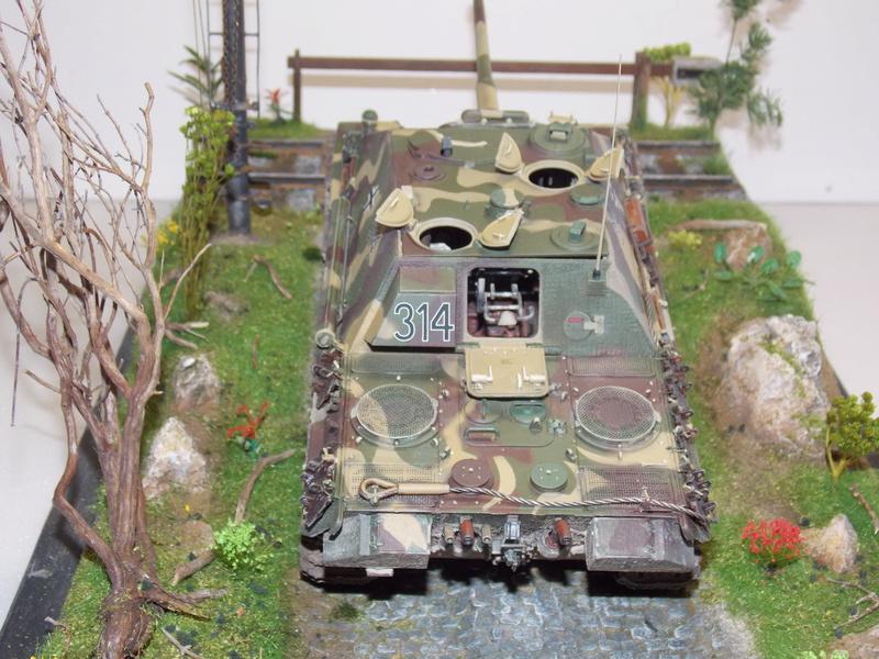 jagdpanther - Jagdpanther sur la voie (dragon 1/35) - Page 2 Dscn6144