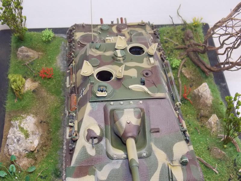 jagdpanther - Jagdpanther sur la voie (dragon 1/35) - Page 2 Dscn6145