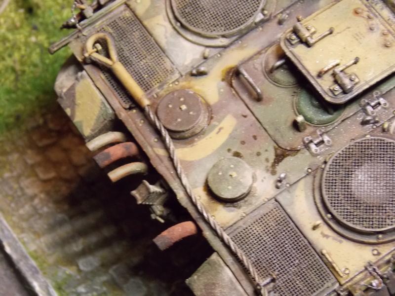 jagdpanther - Jagdpanther sur la voie (dragon 1/35) - Page 3 Dscn6226