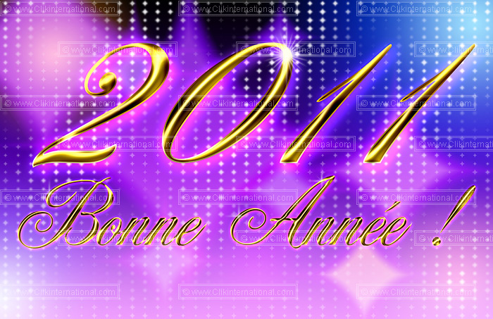 BONNEE ANNEE 2011 201110