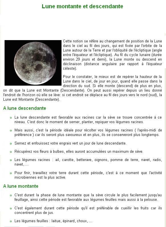 Jardiner avec la lune Bb25