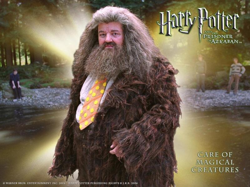 """Que veut dire : un prix """"agrus"""" ??.?? - Page 2 Hagrid10"""