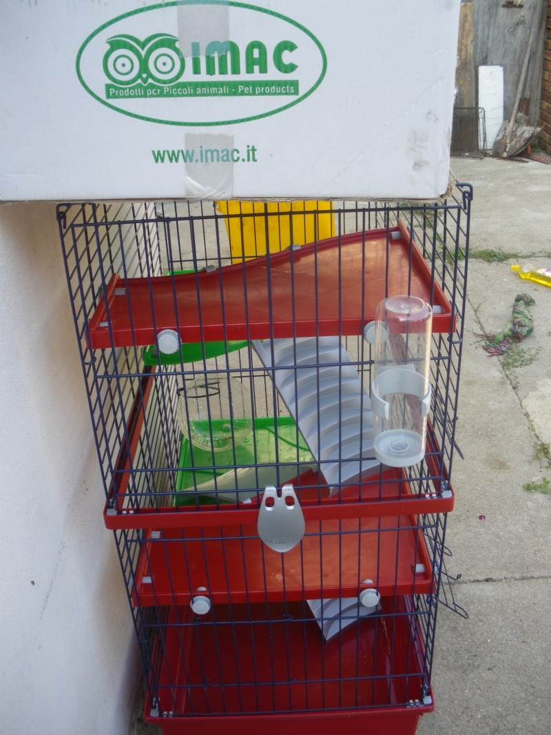 Cage Imgp1712