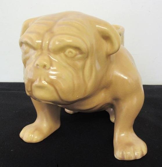 Temuka Bulldog Temuka14