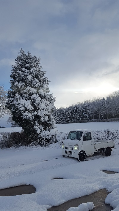 Snow and during in the Vitara 20171212