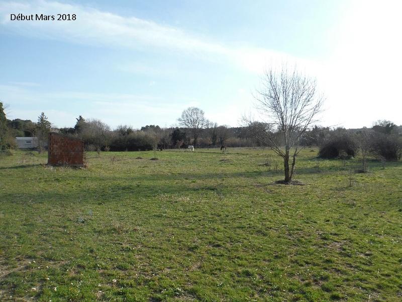 JdB de 4 hectares de pâtures dans le SUD : Avril 2019, et toujours la sécheresse... - Page 8 7020pa10