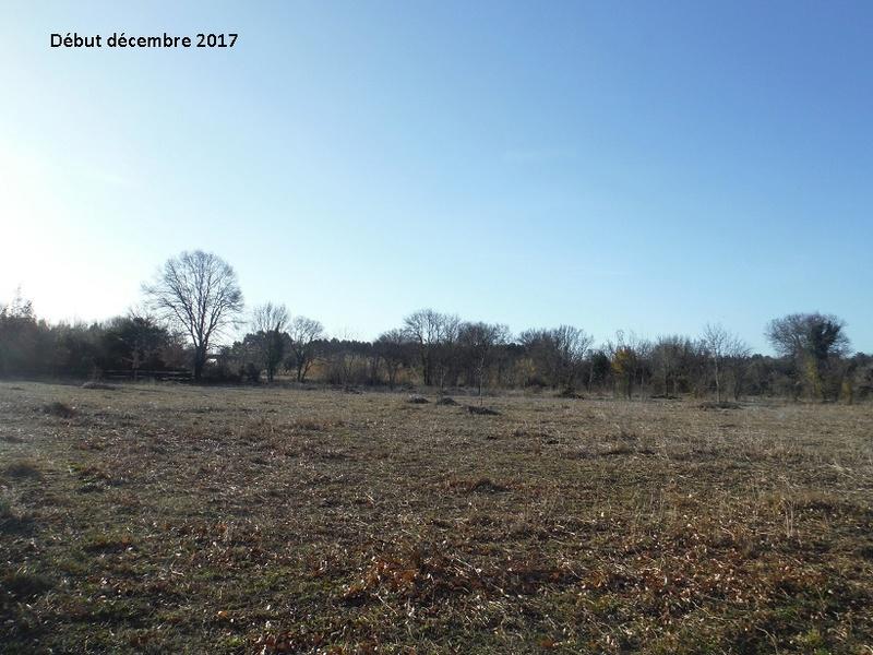 JdB de 4 hectares de pâtures dans le SUD : Avril 2019, et toujours la sécheresse... - Page 7 8017pa10