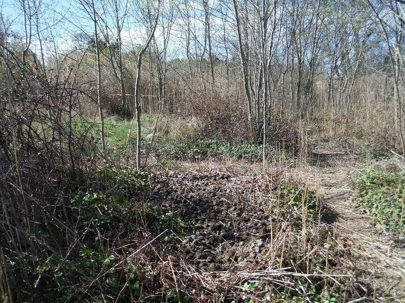 JdB de 4 hectares de pâtures dans le SUD : Avril 2019, et toujours la sécheresse... - Page 8 Dscf2412