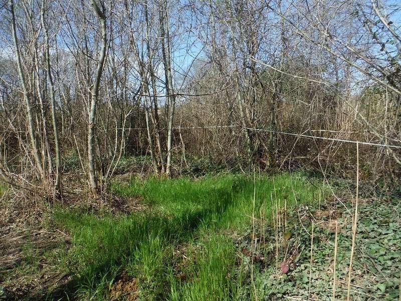 JdB de 4 hectares de pâtures dans le SUD : Avril 2019, et toujours la sécheresse... - Page 8 Dscf2414