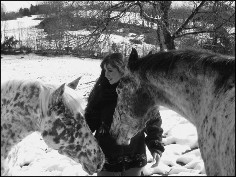 Appaloosa des neiges...Nouvelles photos ! Moietl10