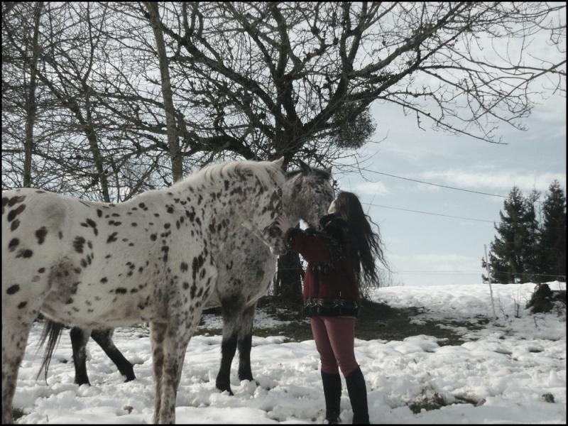 Appaloosa des neiges...Nouvelles photos ! Moitac11