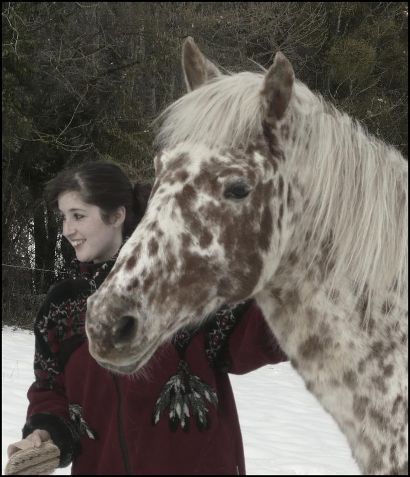 Appaloosa des neiges...Nouvelles photos ! Neigen14