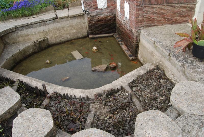 mon bassin! Dsc_0311