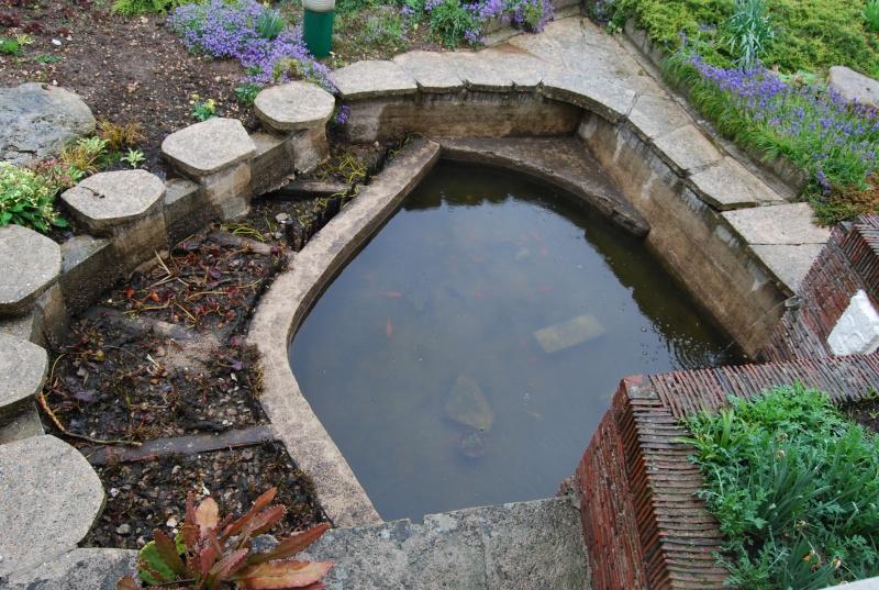 mon bassin! Dsc_0410
