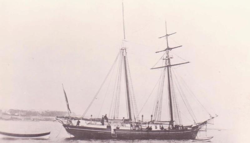 * PERLE (1875/1892) * Goylet13