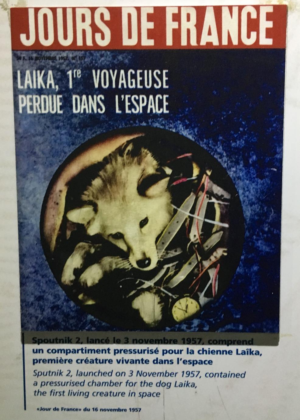 Un projet hommage à Laika sur WUS - Page 2 Img_0814
