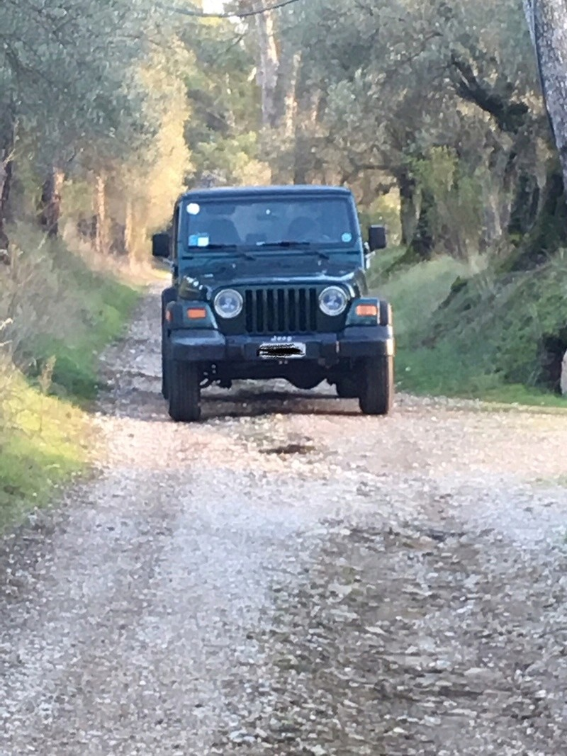 tj sport 99 4.0 litre Jeep12