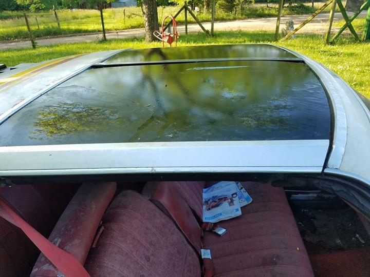 '77 Chevelle SE for sale!!!! 18620410