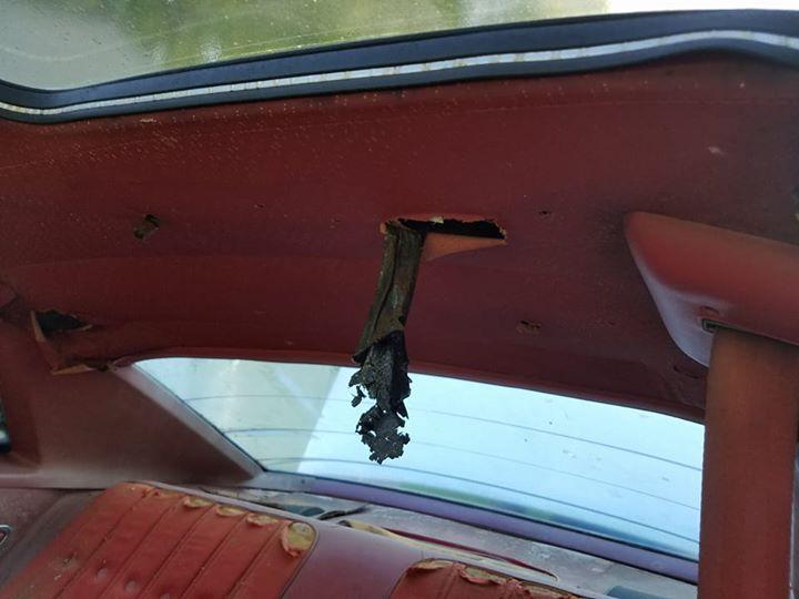 '77 Chevelle SE for sale!!!! 18664610