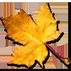 Autumn Leaves   / Feuilles d'automne 410