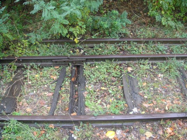 Chemins de fer de Provence Nice - Digne octobre 2016 Dsc08041