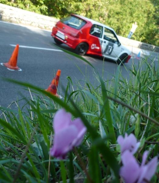 12° Slalom Città di Massa Lubrense 2011- (NA) -  P1040110