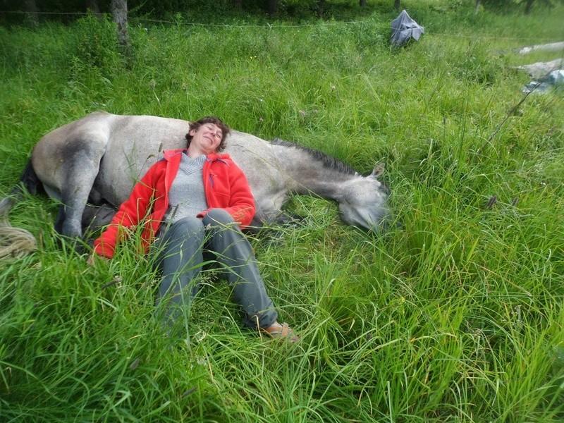"""ON VOTE Concours photos """"Nos chevaux et la tendresse"""" Sam_3710"""