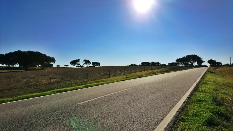 A estrada mais longa. EN2 Dsc_1631