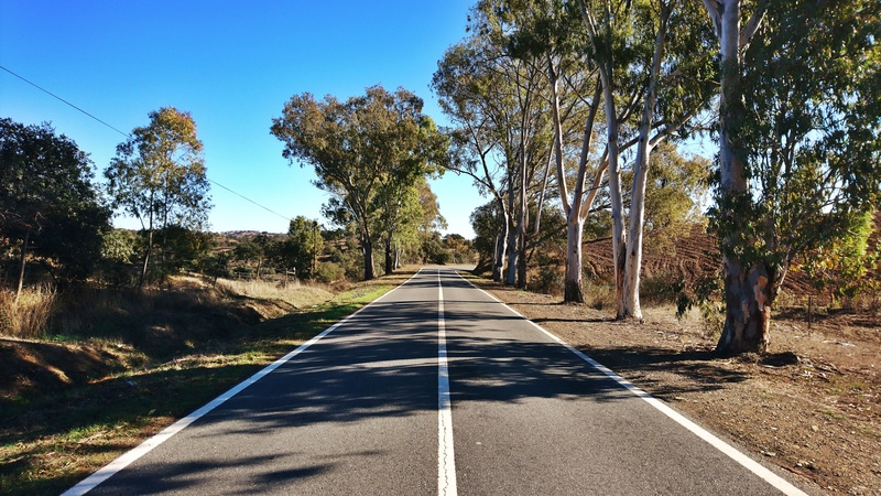 A estrada mais longa. EN2 Dsc_1634