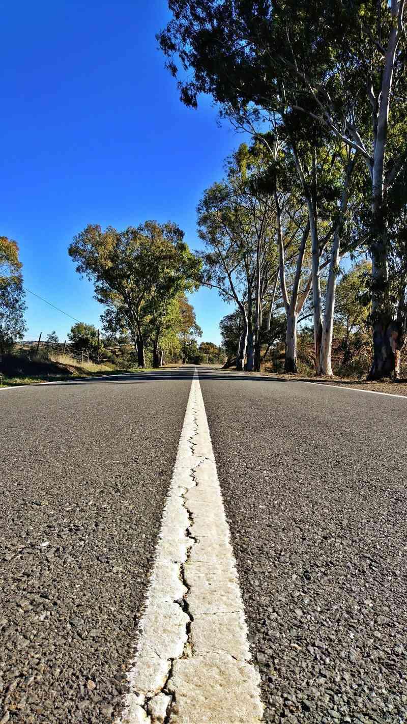 A estrada mais longa. EN2 Dsc_1635