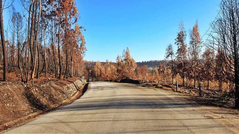A estrada mais longa. EN2 Dscf1844