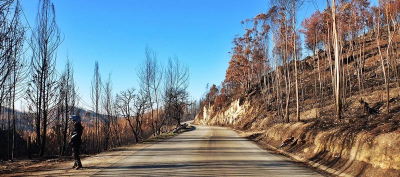 A estrada mais longa. EN2 Dscf1845