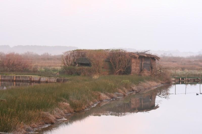 domaine de certes sur le bassin d'arcachon Photo_27