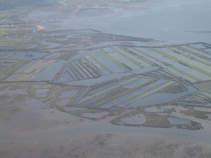 domaine de certes sur le bassin d'arcachon Septem10
