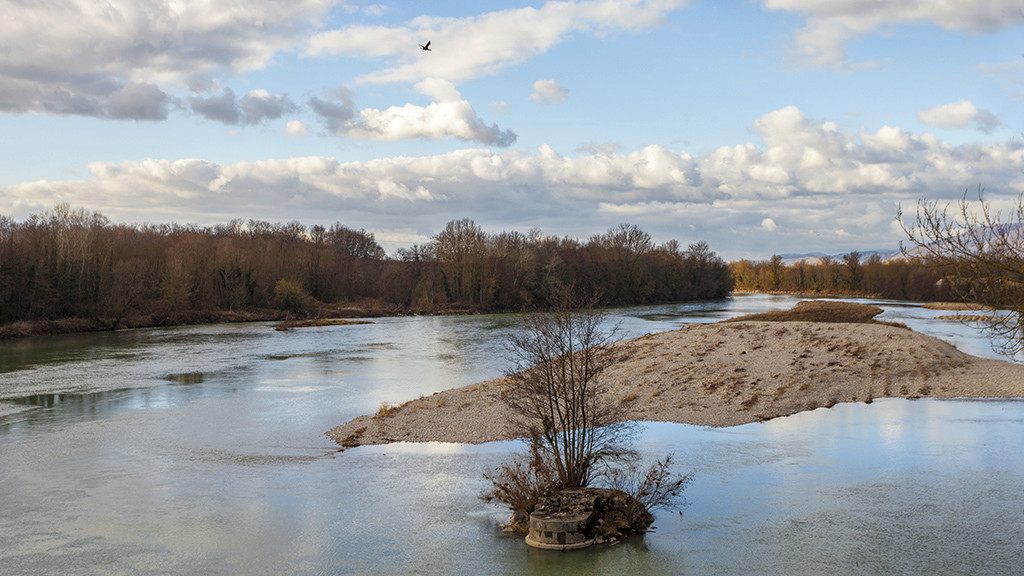 Balade au bord du Rhône .. 2 Img_3012