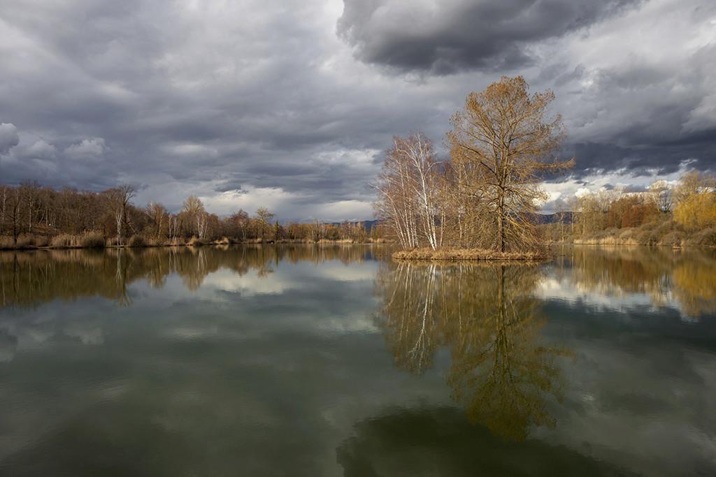 L'étang ... Img_3510