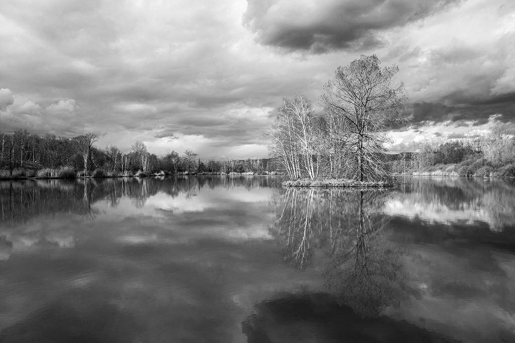 L'étang ... Img_3513