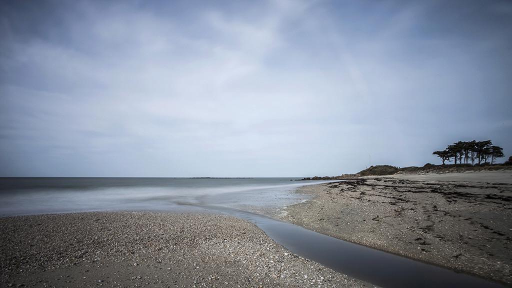 Retour à l'Océan ... Img_4110