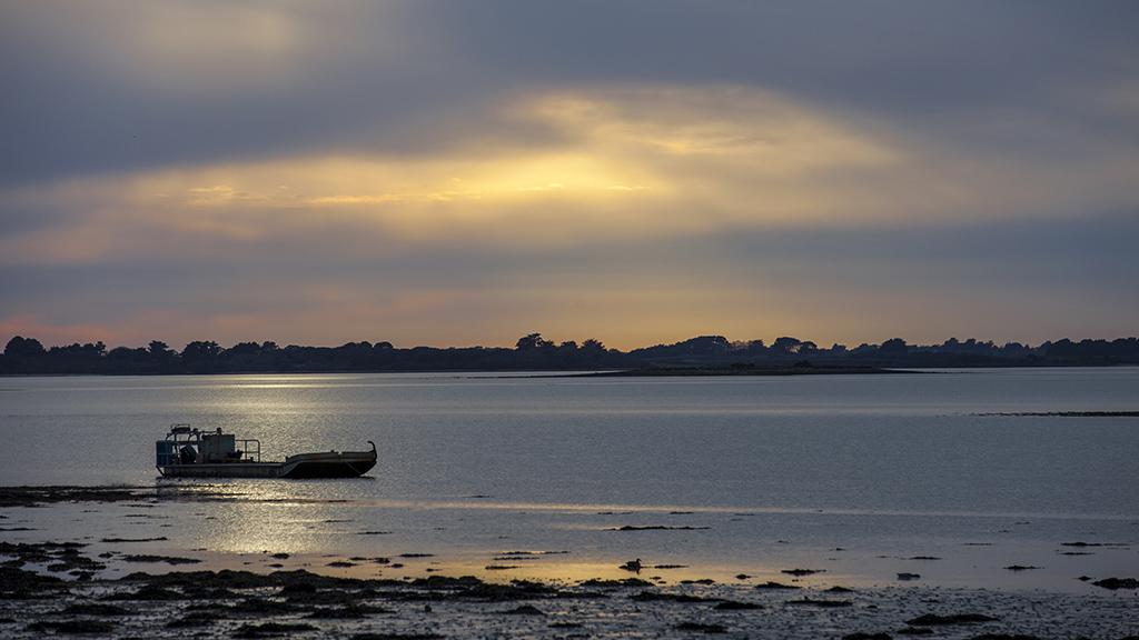 Sunset breton au canard ....  Img_4513