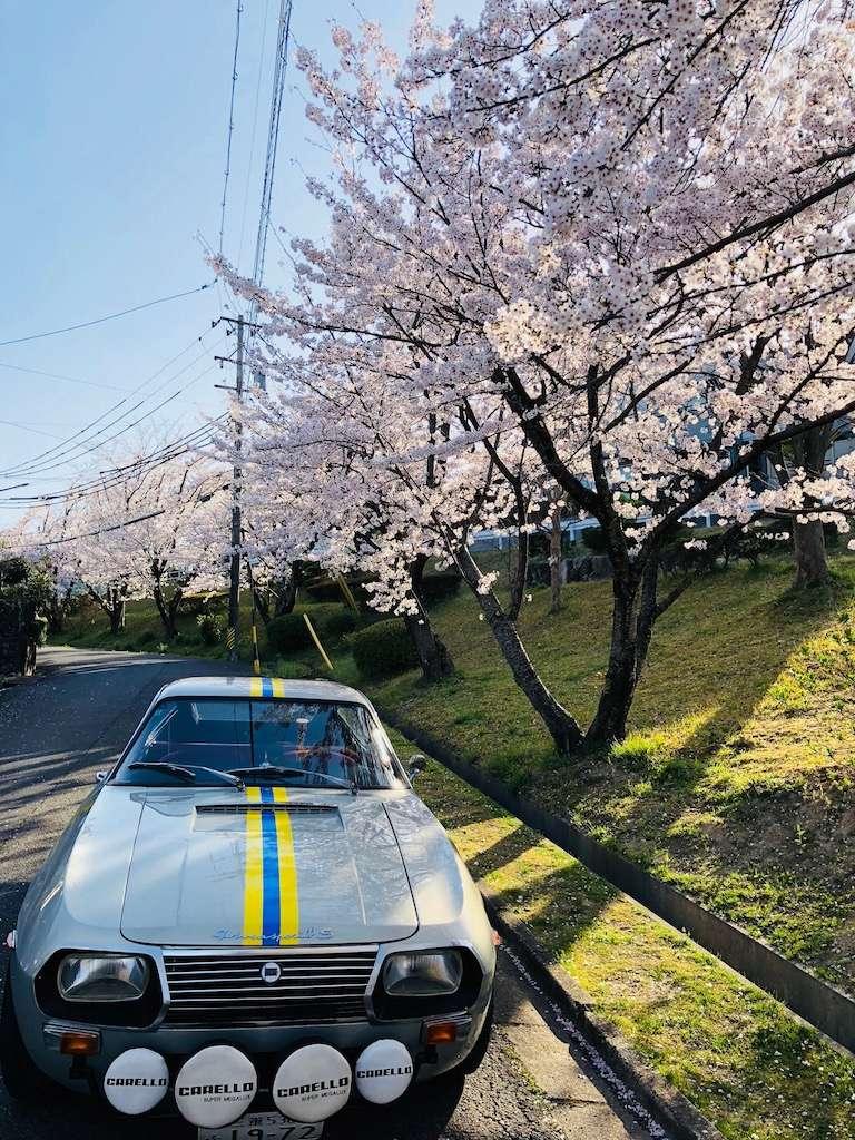 Primavera Img_8611