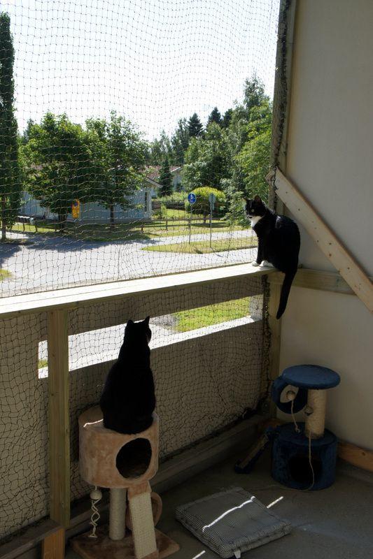Systèmes de protection pour vos chats Filet_13