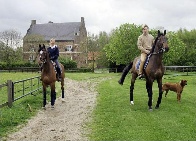 Žydro stiliaus žirgas - Registracija 9752_g10
