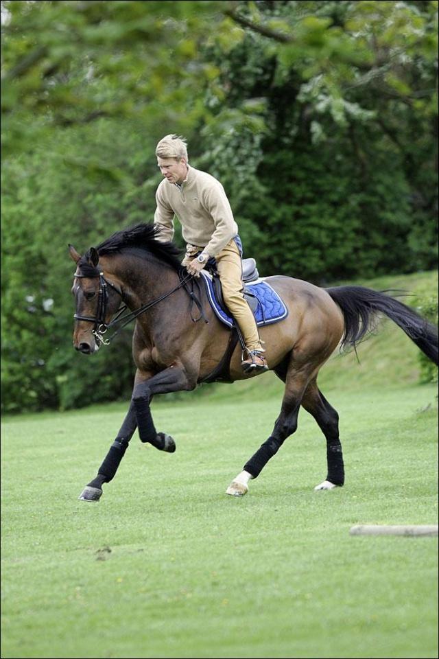 Žydro stiliaus žirgas - Registracija Pentti10