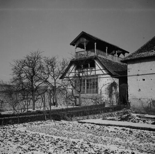 La vie au Freihof à Wangen il y a quelques années déjà..... 1010
