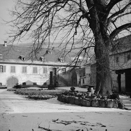 La vie au Freihof à Wangen il y a quelques années déjà..... 1110