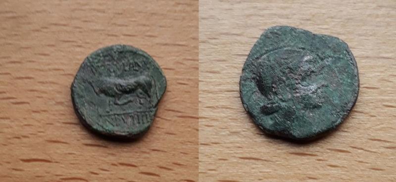 Bronze au taureau 20180113
